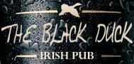 Pub The black duck